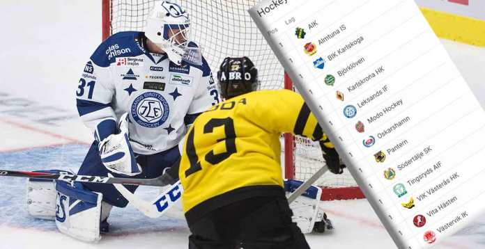 Hockeypuckat