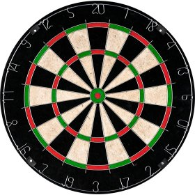 TG Champion Tournament Bristle Dartboard_