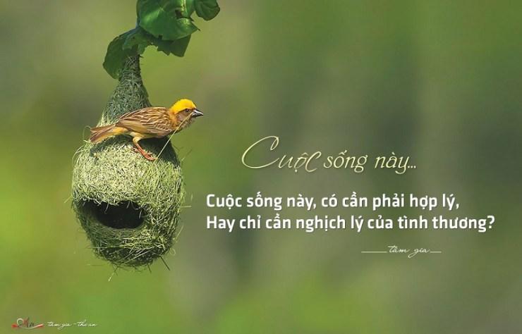 cuoc-song-kho-khan-nhung-deu-chua-dung-nguyen-ly-cua-no