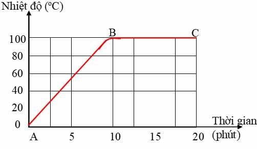 Bài Tập C9 Trang 88 SGK Vật Lý Lớp 6