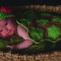 "Infant Turtle Shell ""Blanket"""