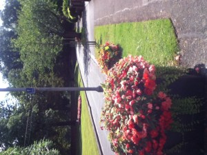 Didsbury in Bloom