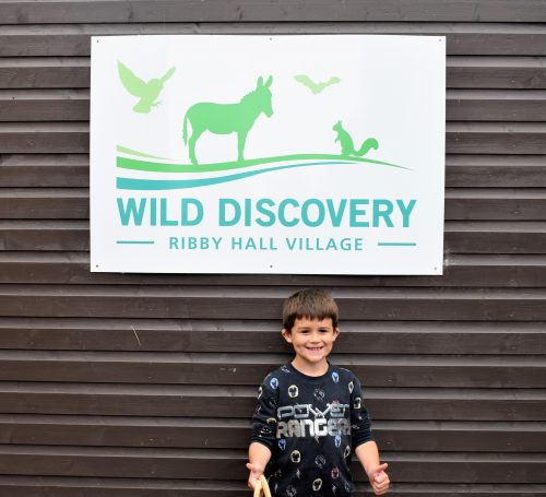 Days Out: Wild Discovery at Ribby Hall