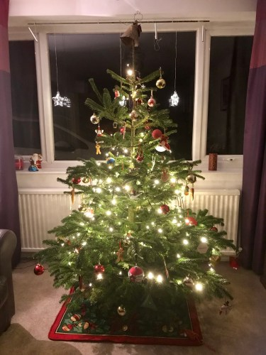 Our Real Christmas Tree from Christmas Forest