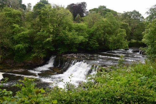 Days Out: Aysgarth Falls, North Yorkshire