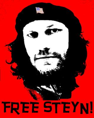 070806-free-steyn.png