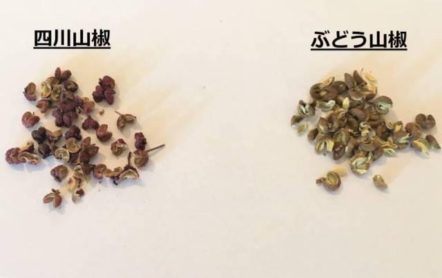 四川山椒とぶどう山椒