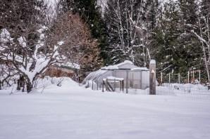farm-winter-1-of-5