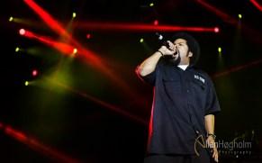 Lør2012_AH_Ice_Cube_050