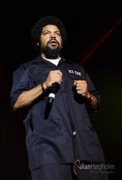 Lør2012_AH_Ice_Cube_060