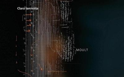 Clara Iannotta: Moult