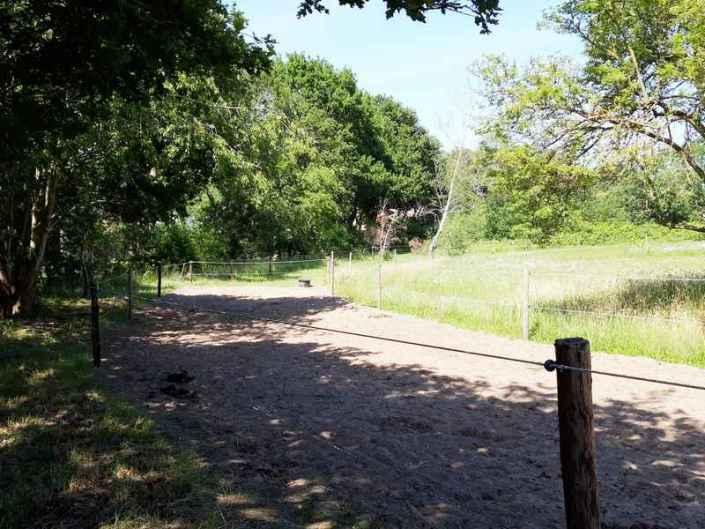 Paardenstalling Hoeve Heide en Wold