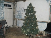 Inside the house, a tree in the Living Room