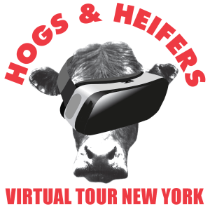 Virtual Tour New York