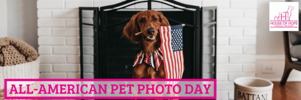 All-American Pet Photo Day