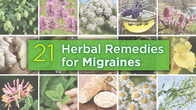 21-Herbal-Remedies-Migraines