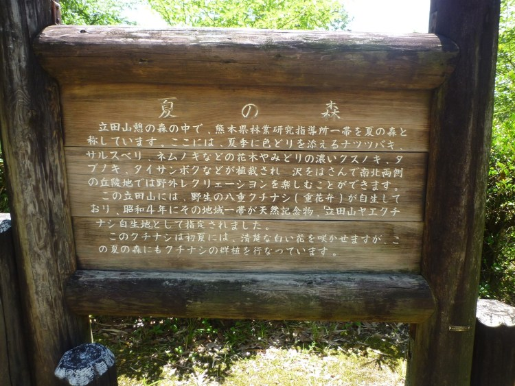 夏の森看板1