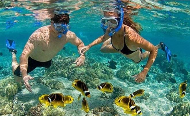 Cham Island Snorkeling Tour- Hoi An Private Car