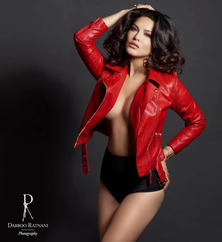 Top 15 Bollywood Actress Topless for The Photo Shoot of Dabboo ratnani calendar 112