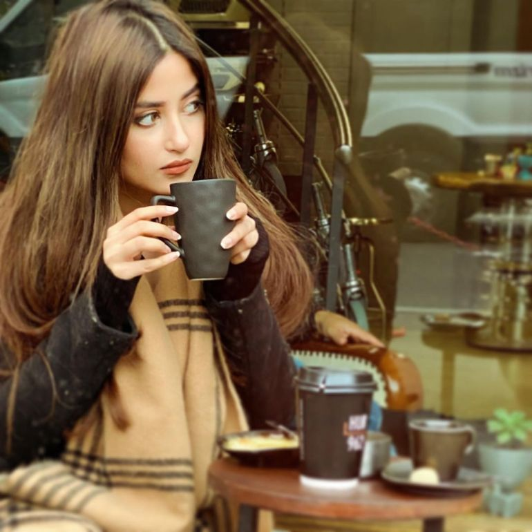 Sajal Aly Wiki, Age, Biography, Movies, and Beautiful Photos 121