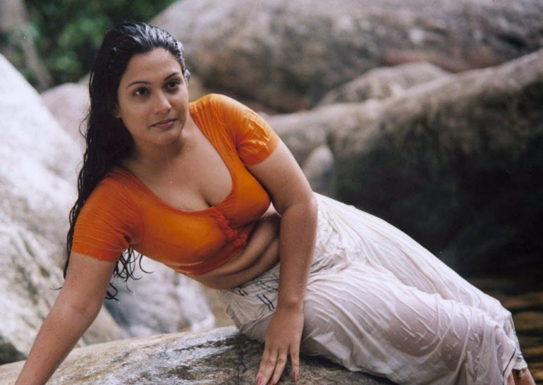 Check out this Popular South Indian B-Grade Glamorous Actresses 120