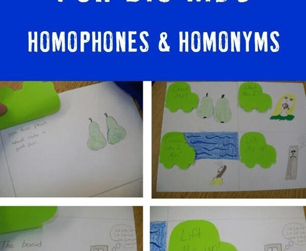 Homophones/Homonyms Practice