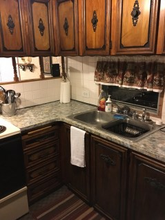 Kitchen counter and sink area