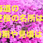北海道の芝桜の名所は?時期や見頃は?滝上公園のアクセス方法は?
