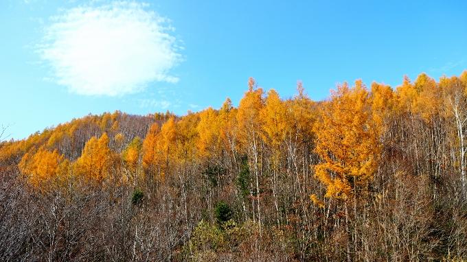 紅葉シーズンの中山峠