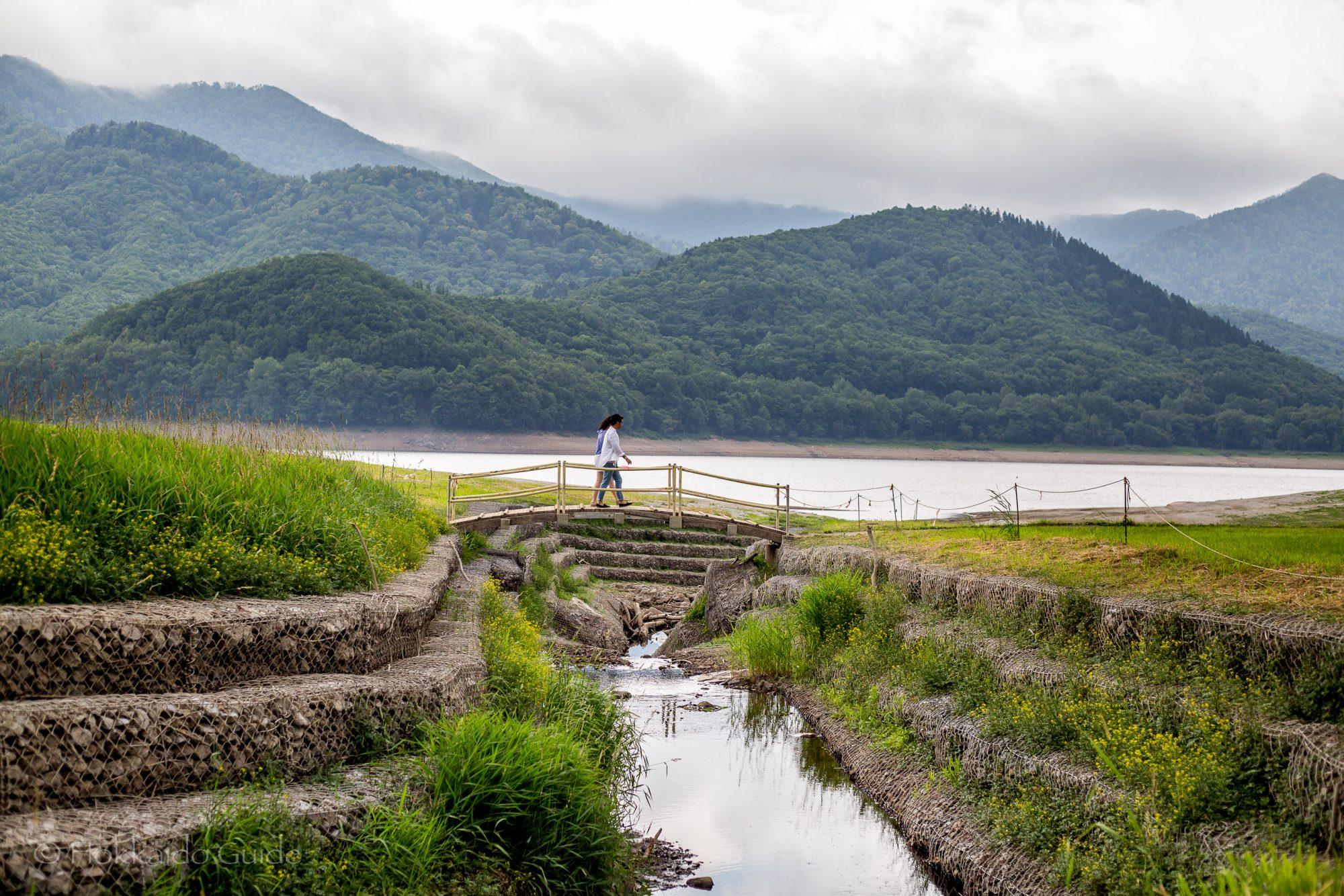 Lake Kanayama Lavender Fields – Hokkaido Guide