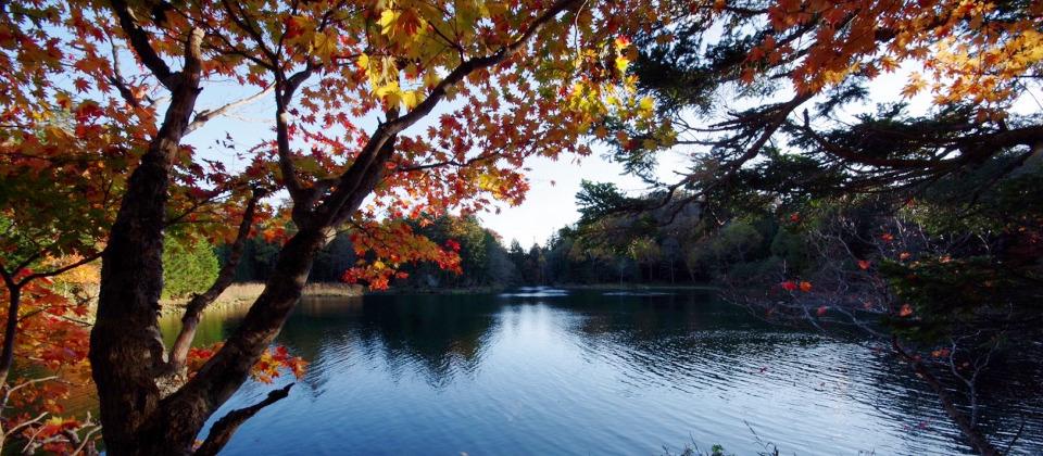 太郎湖の紅葉