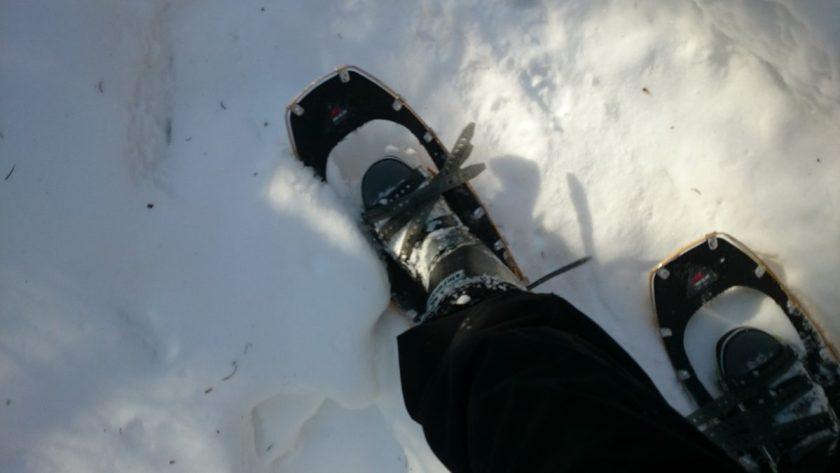 雪上をのんびりと歩いてみましょう