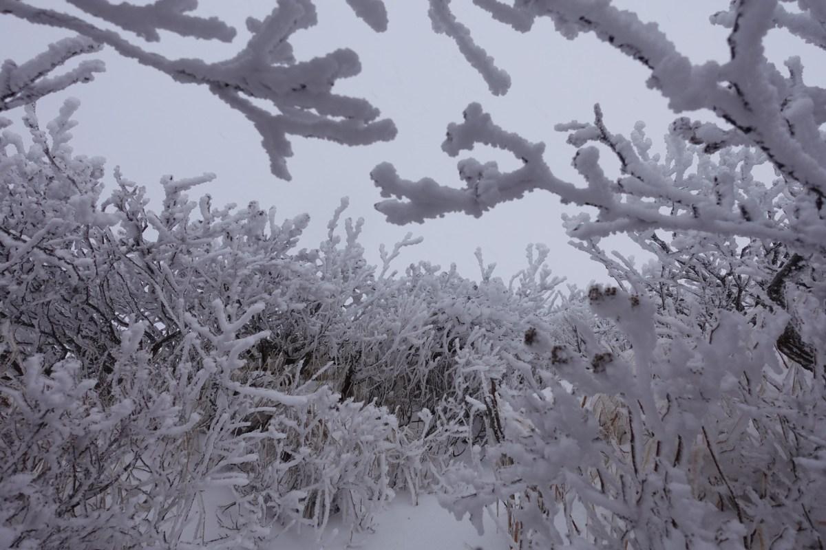 2020/10/31 初冬の斜里岳登山ガイド