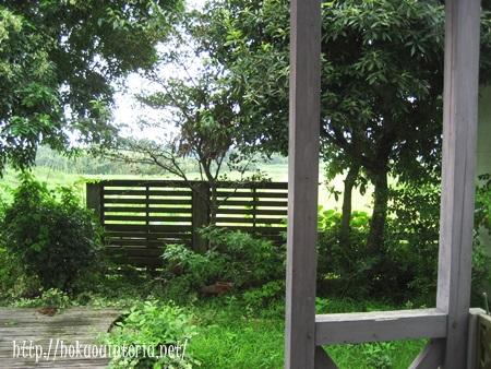 庭の雑草対策
