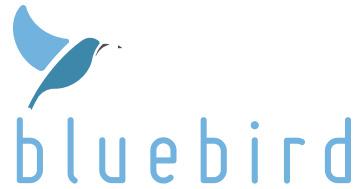 外語學習平台 bluebird