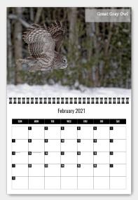 """2021 Calendar """"Birds of Canada"""""""