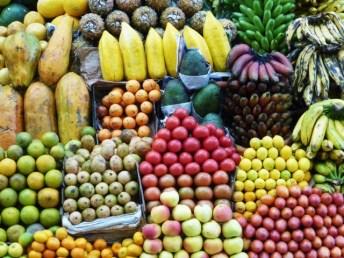 Früchte_2.JPG