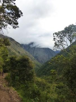 alta selva, kurz vor Chaullay