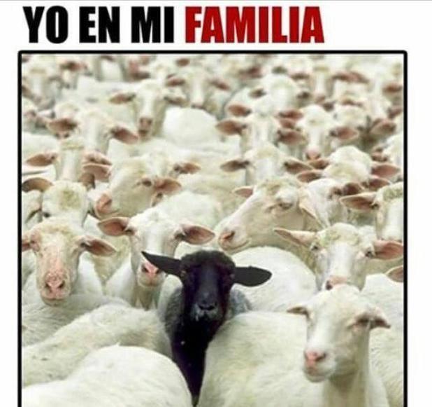 yo-en-la-familia