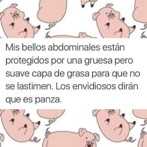 mis-bellos-abdominales