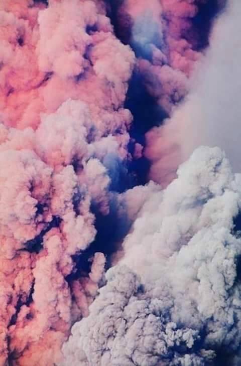 fondo-de-color