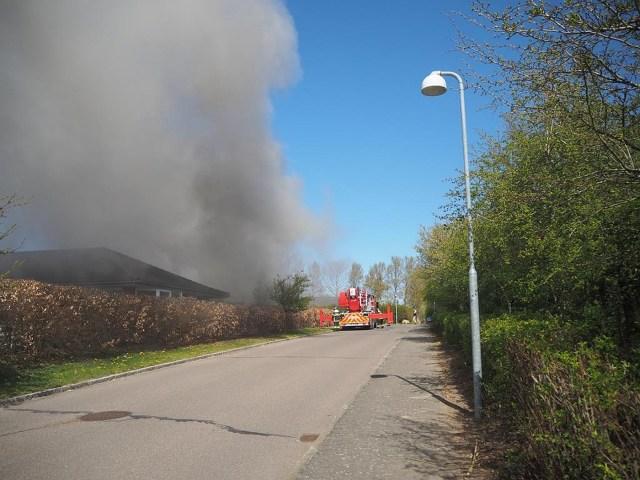 Foto: Henning Lundhøj