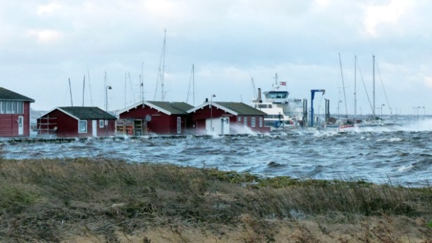 Stormen Bodil har presset enorme mængder vand ind i Isefjorden. Foto: Jesper von Staffeldt.
