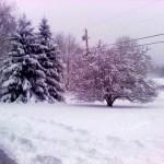 2009 12 29 Snow Snowfall
