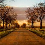 cropped-beautiful-country-road-header.jpg