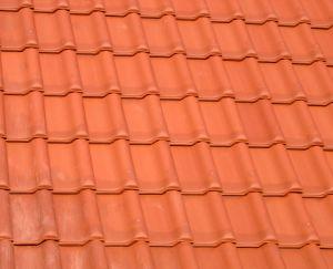 Z czego wykonać dach domu?