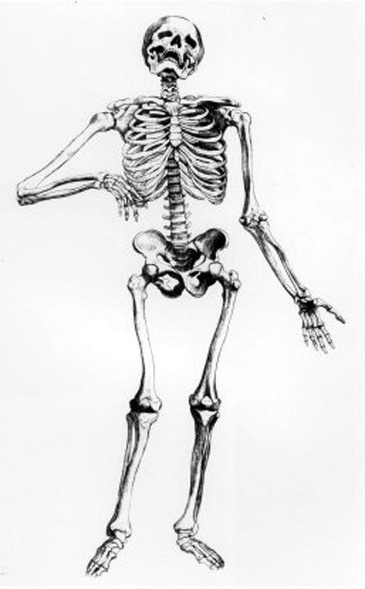 Bones-&-Peter-Gordon
