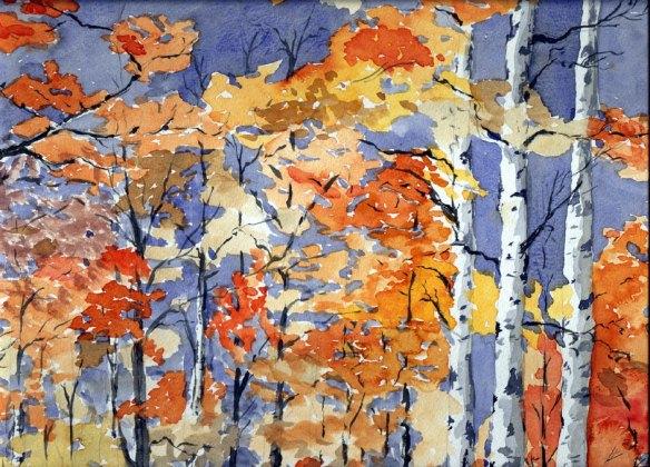 Birch-woods