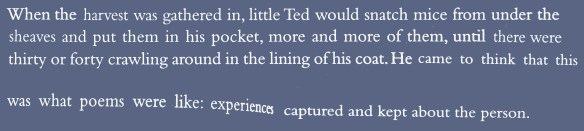 Ted Hughes (22)