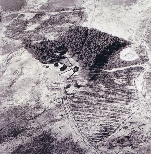 Aerial view of Bovaglie Farm - 13 March 2003